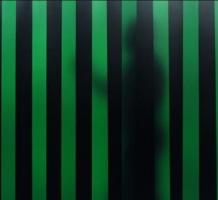 Laslamellen 300x2 Groen 6 rol van 50 meter